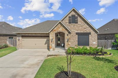 Madison County, Brazos County Single Family Home For Sale: 2504 Warkworth Lane