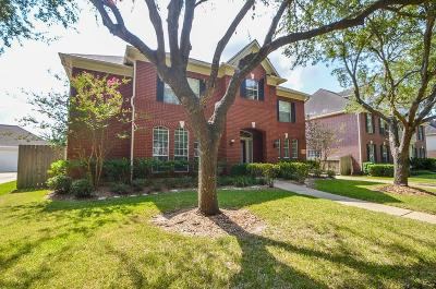 Sugar Land Single Family Home For Sale: 4419 Greystone Way