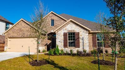 Balmoral Single Family Home For Sale: 12115 Allington Cove Lane