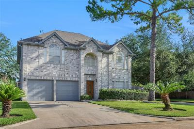 Houston Single Family Home For Sale: 15026 Green Stone Drive