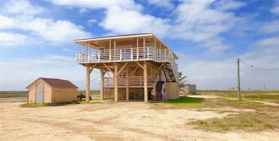 Brazoria County Single Family Home For Sale: 11409 County Road 257