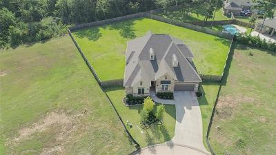 Single Family Home For Sale: 1404 Graystone Hills Drive