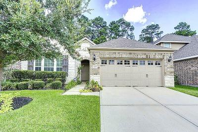 Houston Single Family Home For Sale: 13319 Hartland Lake