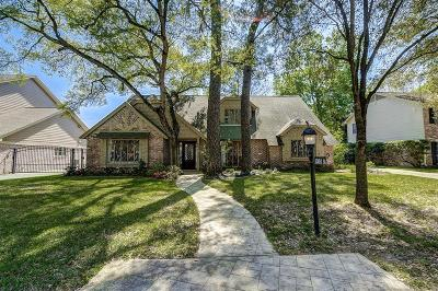 Houston Single Family Home For Sale: 13619 Alchester Lane