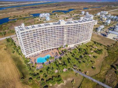 Galveston Mid/High-Rise For Sale: 1401 E Beach Drive #808