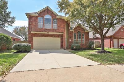 Sugar Land Single Family Home For Sale: 4614 Silverlake Drive