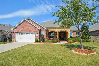 Richmond Single Family Home For Sale: 714 Texas Star Drive