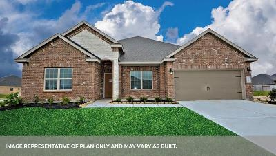 League City Single Family Home For Sale: 6311 Firewood Drive