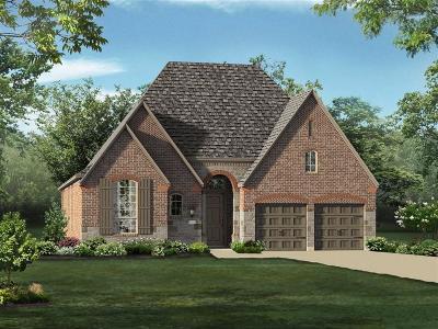 Conroe Single Family Home For Sale: 10474 Lake Palmetto Drive