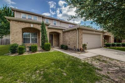 Tomball Single Family Home For Sale: 19826 Rippling Brook Lane