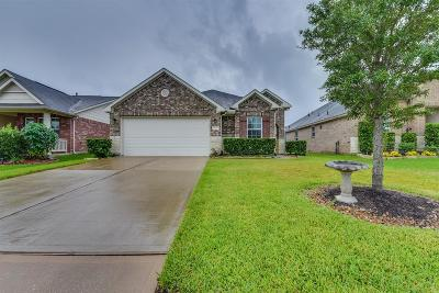 Richmond TX Single Family Home For Sale: $219,000