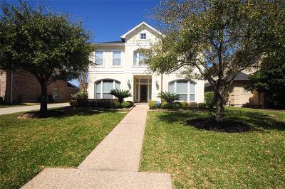 Houston Single Family Home For Sale: 14206 Cloud Cliff Lane