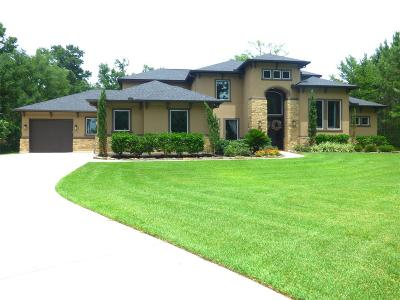 Magnolia Single Family Home For Sale: 11802 Water Oak Court