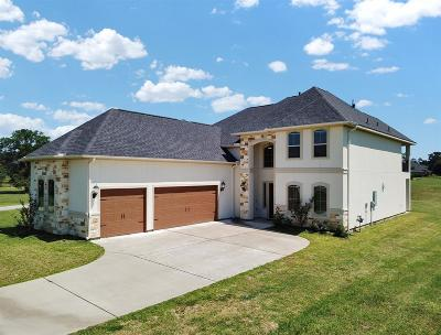 Montgomery Single Family Home For Sale: 18859 Serene Water Drive