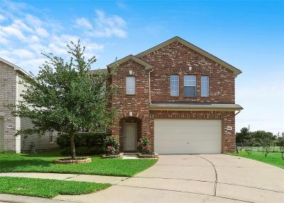 Katy Single Family Home For Sale: 21402 Roaring Hill Court