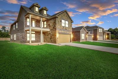 Single Family Home For Sale: 9 Salado Vista Court