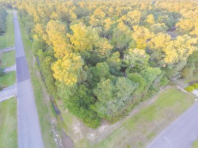 Huffman Residential Lots & Land For Sale: 1003 Winchester Bend