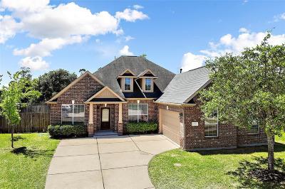Cypress Single Family Home For Sale: 15223 Heron Meadow Lane