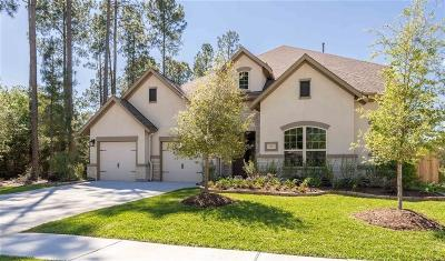 Tomball Single Family Home For Sale: 13427 Alpine Mountain