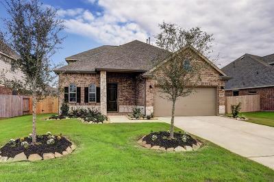 Rosenberg Single Family Home For Sale: 2203 Opal Field Lane
