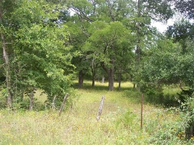 Austin County Farm & Ranch For Sale: 4398 Schoenau 15 Ac Tract Road