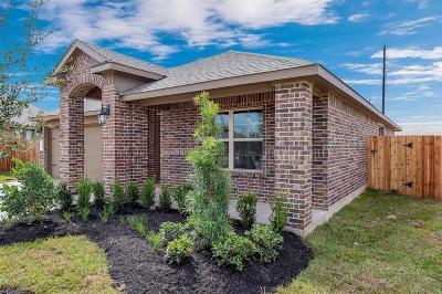 Katy Single Family Home For Sale: 4039 Palmer Meadow #A