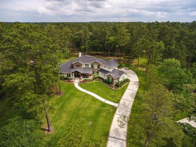 Single Family Home For Sale: 28223 Meadow Forest