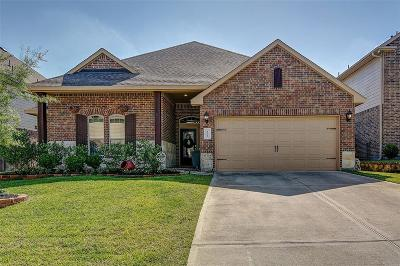 Conroe Single Family Home For Sale: 122 Grazing Field Drive