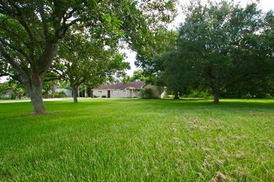 Bay City Single Family Home For Sale: 11977 State Highway 60 S