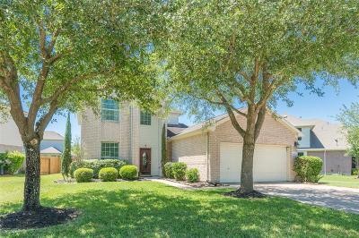Houston Single Family Home For Sale: 9511 Vander Rock Drive