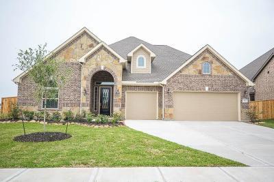 Lakes Of Savannah Single Family Home For Sale: 4714 Prairie Springs Lane