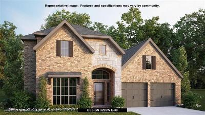 Manvel Single Family Home For Sale: 2007 Bayleaf Manor Drive