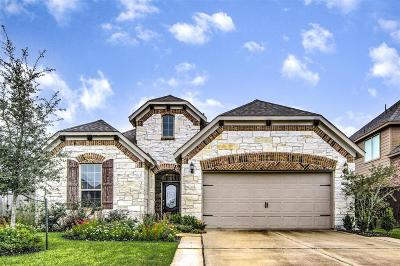 Pearland Single Family Home For Sale: 3638 Watzek Way