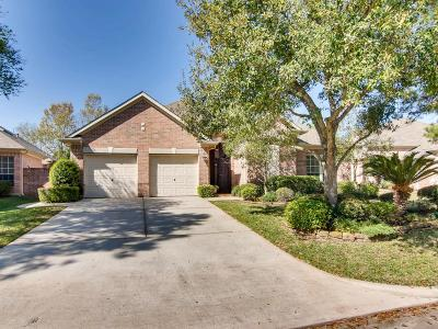 Spring Single Family Home For Sale: 10019 Cairn Meadows Drive