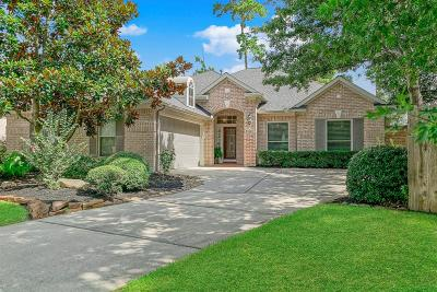 The Woodlands Single Family Home For Sale: 26 Eagle Mead Place