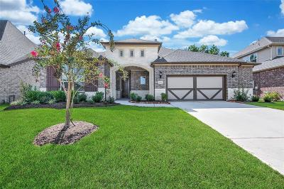 Conroe Single Family Home For Sale: 1026 Bat Hawk Court