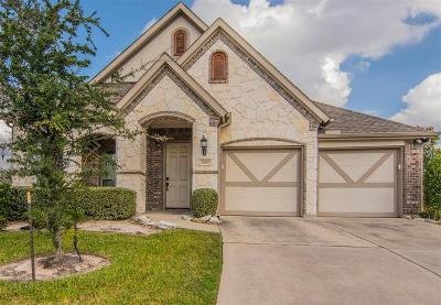 Tomball Single Family Home For Sale: 18010 Islet Court
