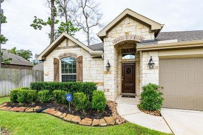 New Caney Single Family Home For Sale: 18711 Croftsmill Drive