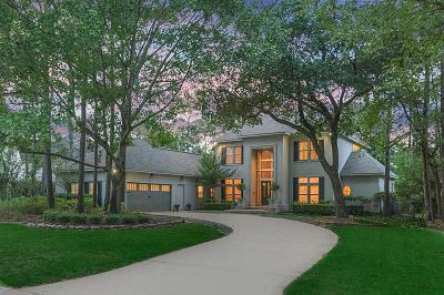 The Woodlands Single Family Home For Sale: 41 E Shadowpoint