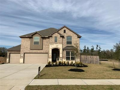 Tomball Single Family Home For Sale: 12622 Sherborne Castle