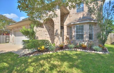 Pearland Single Family Home For Sale: 11605 Waterwood Court