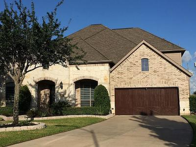Sugar Land Single Family Home For Sale: 1319 Alleyan