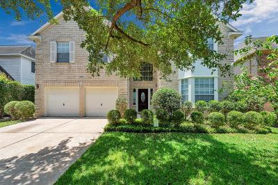 Katy Single Family Home For Sale: 20427 Longspring Drive