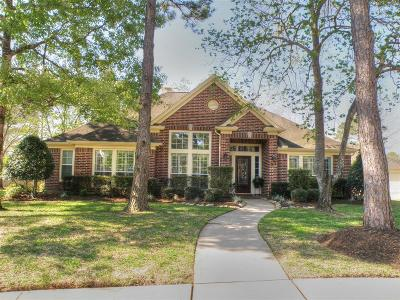 Friendswood Single Family Home For Sale: 704 Pin Oak Drive