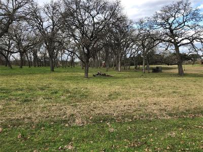 Sealy Residential Lots & Land For Sale: 764 Sodolak Lane