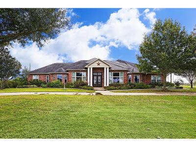 Katy Single Family Home For Sale: 1802 Snow Goose Lane