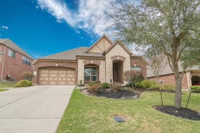Single Family Home For Sale: 323 Arbor Trail Lane