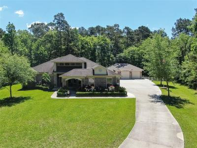Conroe Single Family Home For Sale: 11684 Great Oak Court