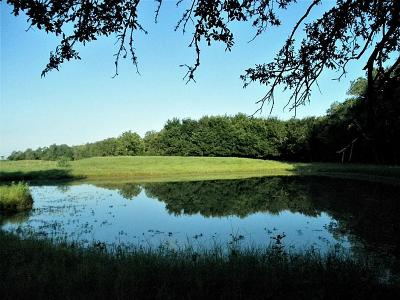 Fort Bend County Farm & Ranch For Sale: Guyler Road