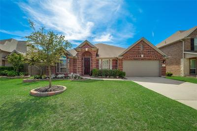 Tomball Single Family Home For Sale: 12923 Chatfield Manor Lane